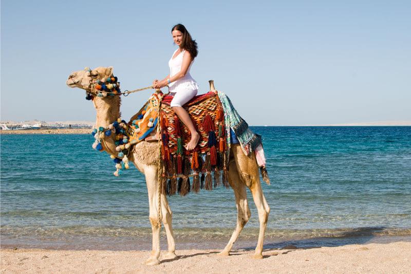 New Year Desert Safari in Dubai